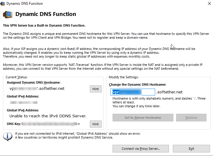 SoftEther Dynamic DNS Function